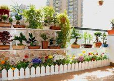 室内阳台花园设计 亲手打造自然空间