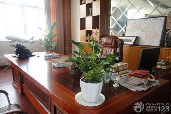 办公室风水植物---如何是事业绿树长存