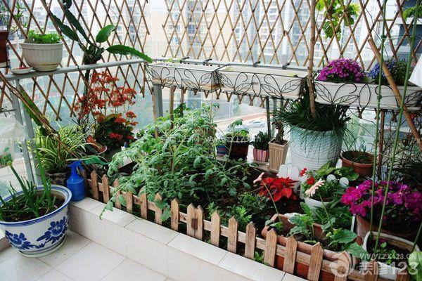 阳台种花的注意事项