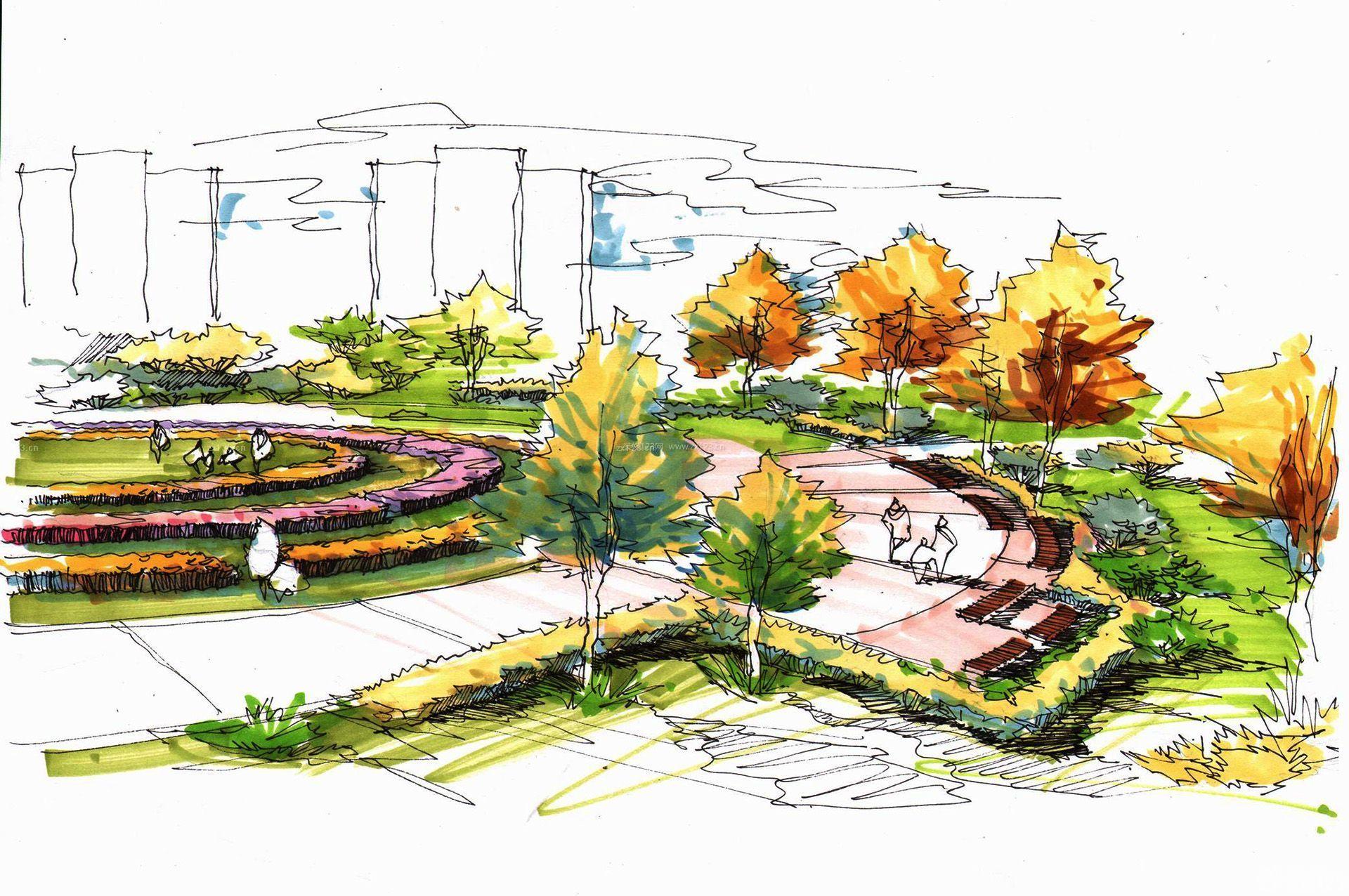 公园绿化景观手绘效果图