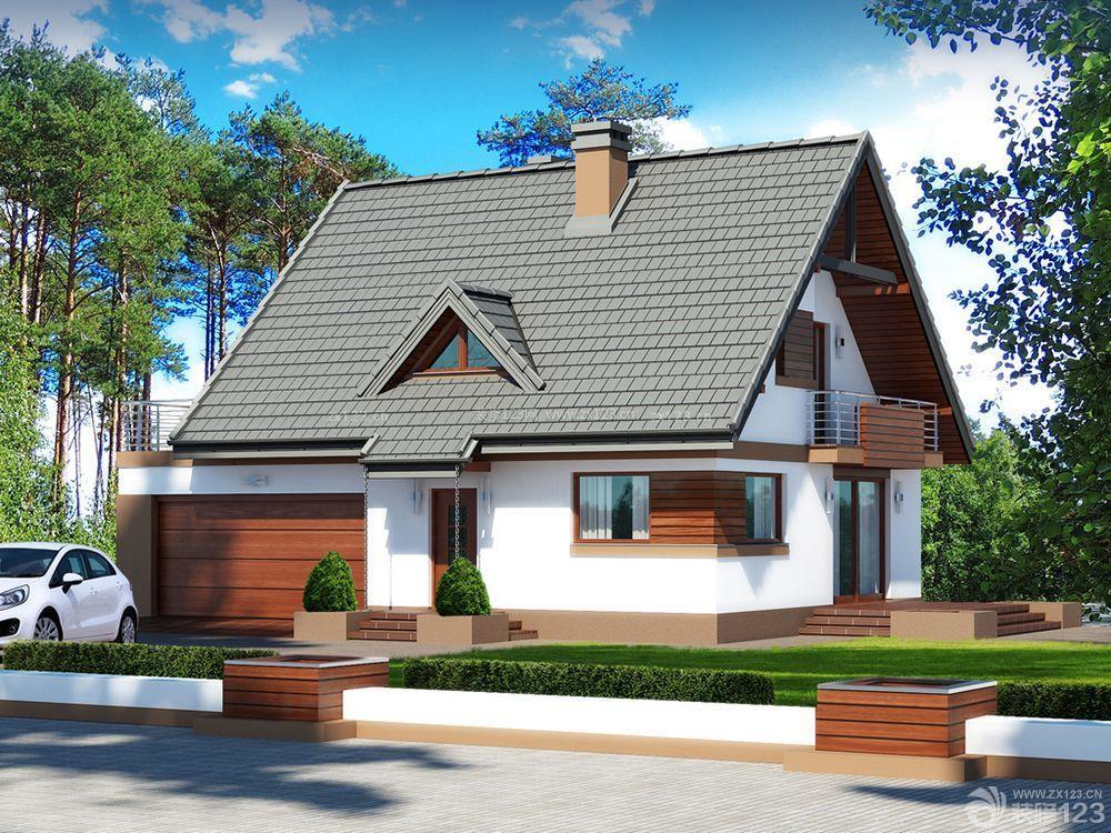 农村小别墅一层半外观设计图片