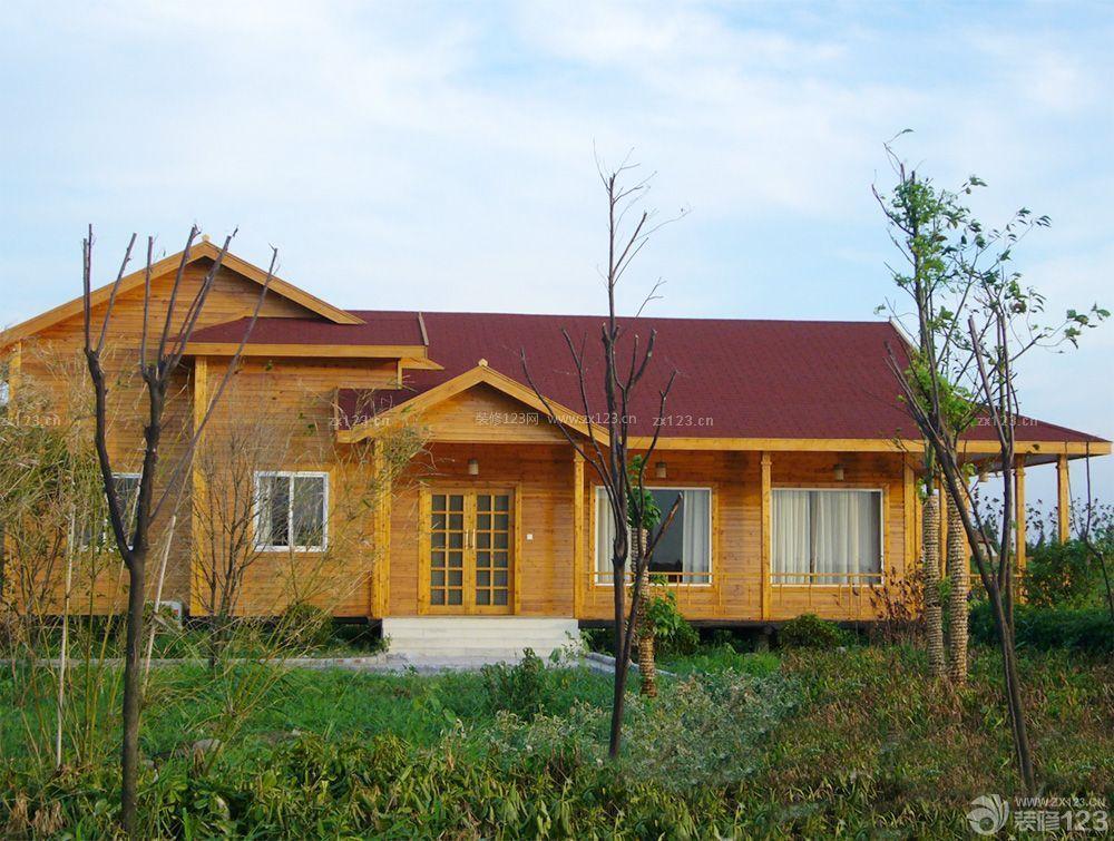 农村一层小型木屋别墅设计图图片