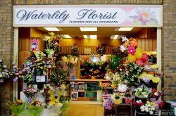 温馨鲜花花店店面设计装修效果图图片