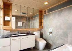 衛生間瓷磚顏色裝飾設計