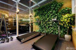 美式别墅健身房装修效果图图片