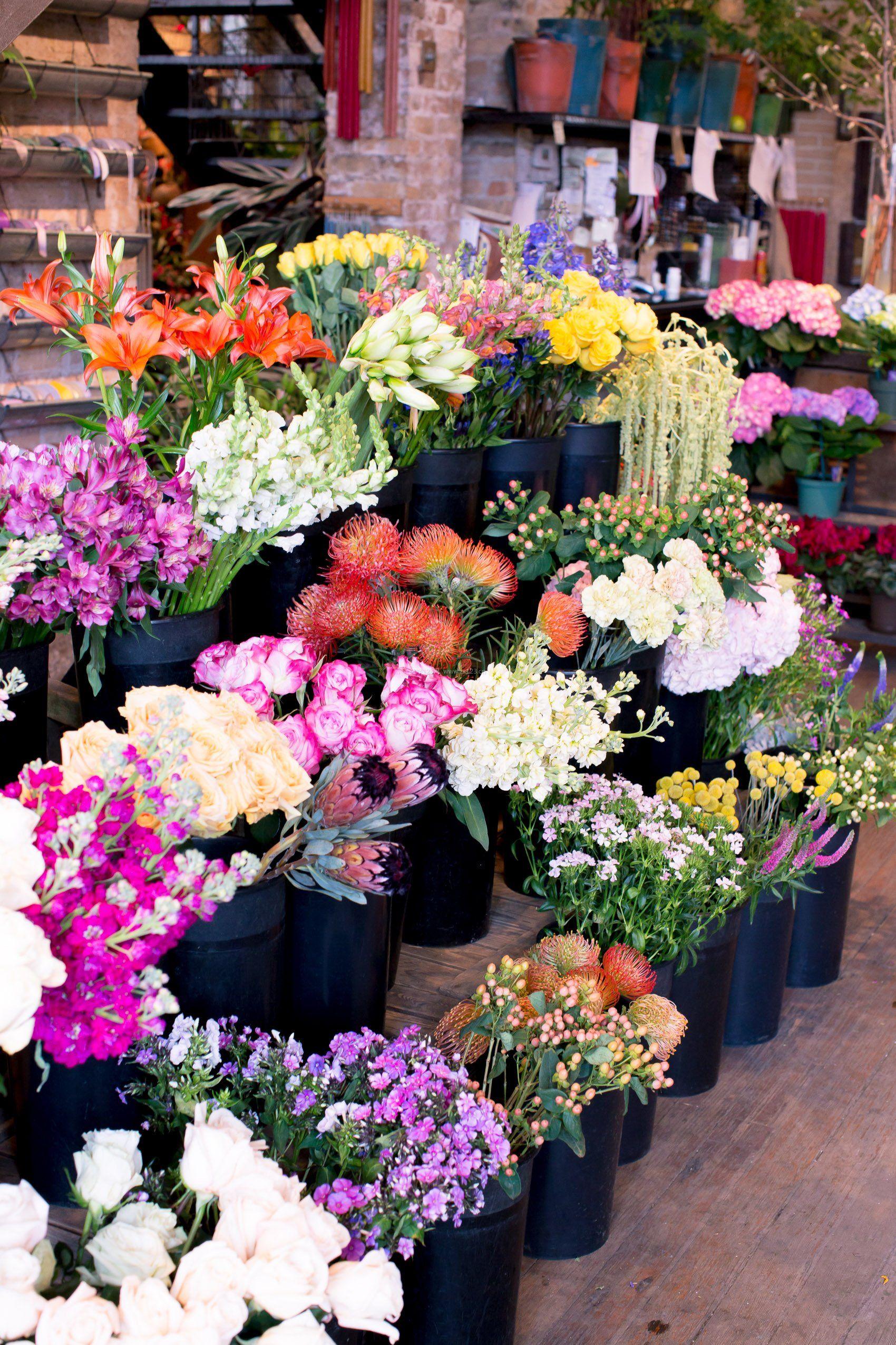 国外最新小型花店装修效果图片