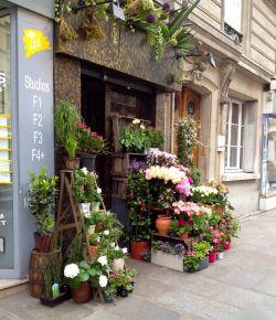 盆栽花店前台设计装修效果图图片