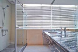 家裝衛生間玻璃隔斷裝修效果圖片大全