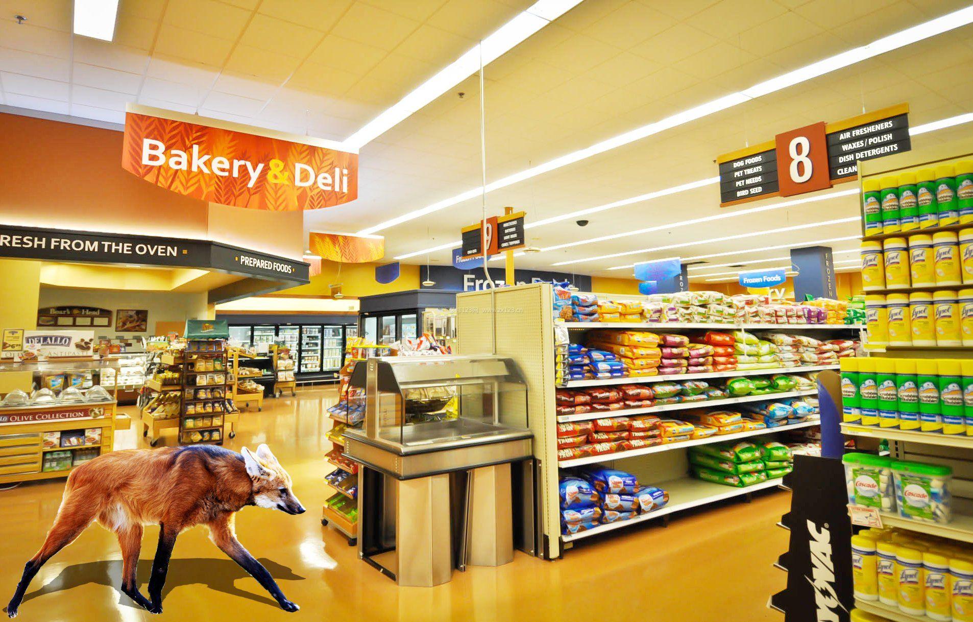 超市防盗门接线图t3800