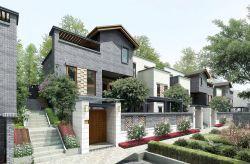 现代中式农村小别墅围墙大门设计效果图图片