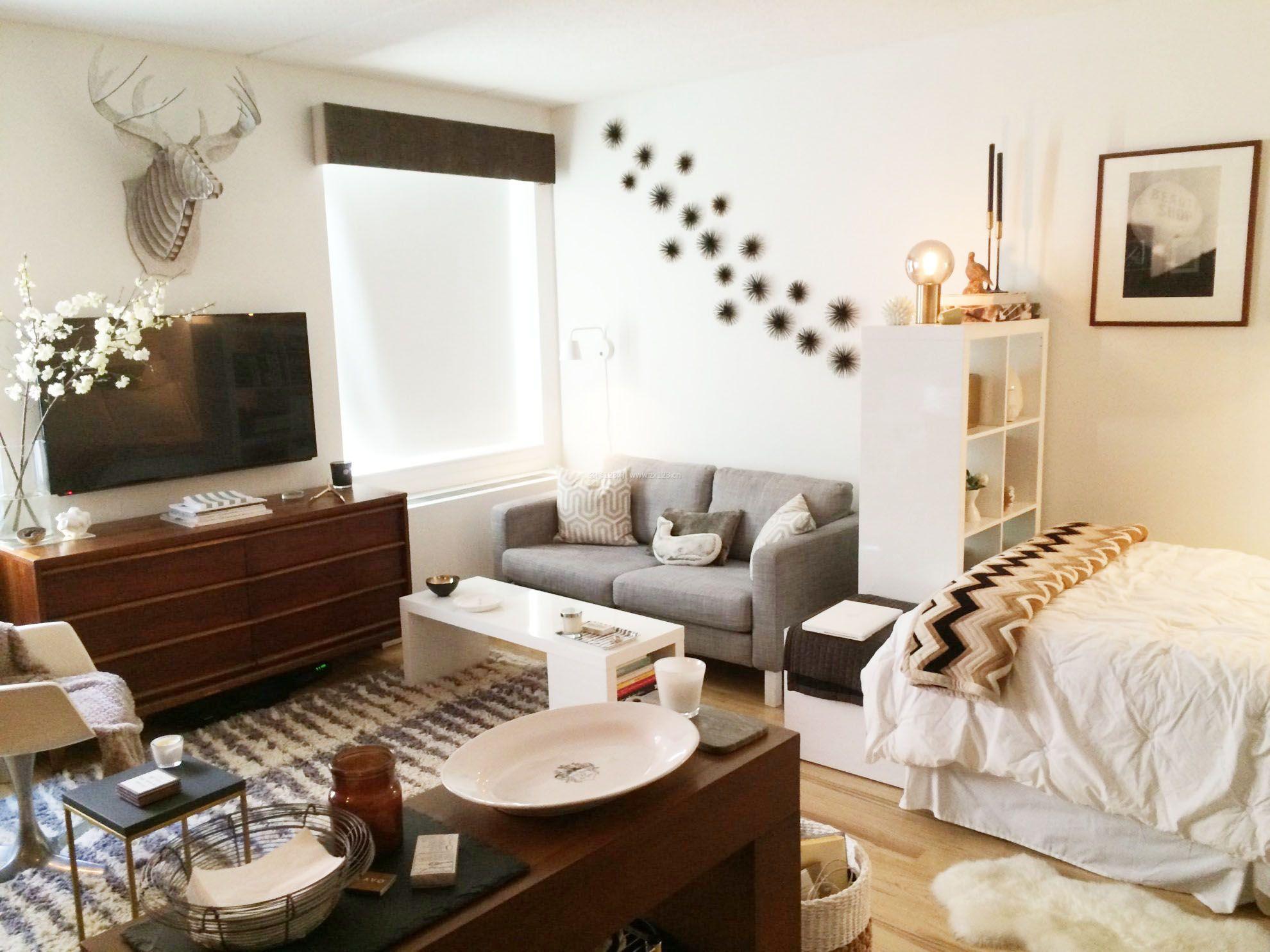 单身公寓家装隔断柜装修平面效果图大全