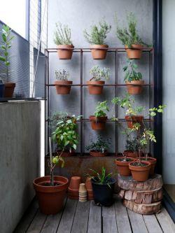 高層陽臺花園背景墻設計裝修效果圖