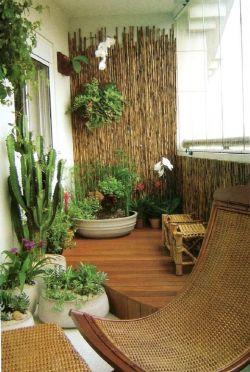 家庭小陽臺花架裝飾圖片