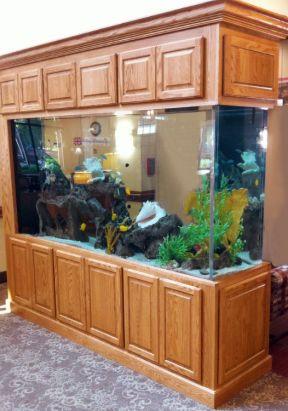 鱼缸造景设计图欣赏
