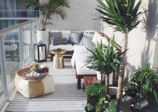 阳台种什么植物风水好 阳台植物摆放禁忌