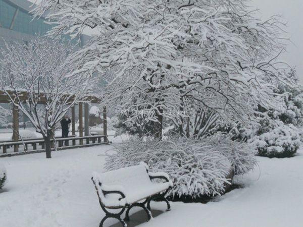 冬至节气习俗有哪些
