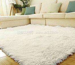 地毯污渍保洁