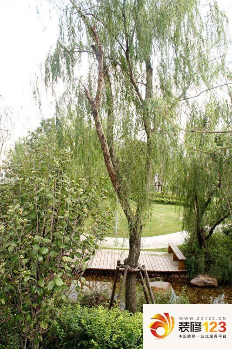 明泉樱桃谷风景区